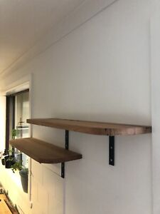 Hardwood Beech timber shelves