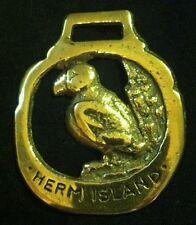Wonderful Vintage HERM ISLAND BIRD Horse Harness Brass England WOW YOUR WALLS