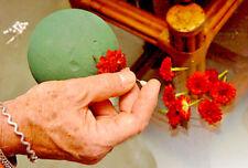 Premium Floral Foam Sphere /Foam Ball/ 3.5 inch for Fresh/Dry Flowers 1 Piece