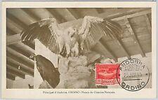 52147 - ANDORRA -  MAXIMUM CARD - 1945  ANIMALS:  Birds