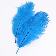 zum Basteln Verzieren als Deko 100 Gänsefedern 0,06€ himmelblau 10x3cm-3x1cm