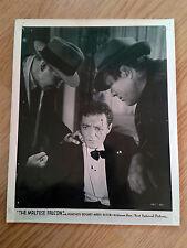 THE MALTESE FALCON - scarce vintage US 8x10 #47 HUMPHREY BOGART John Huston