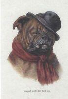*** Bulldog w/Cigar - Dog Art Print - CLEARANCE