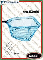 Testa Guadino Ignesti Maxi quadra cm53x60
