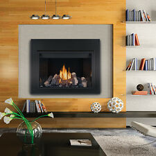 """NAPOLEON HD46 LARGE DIRECT VENT CLEAN FACE HD SERIES PROPANE GAS FIREPLACES 46""""W"""