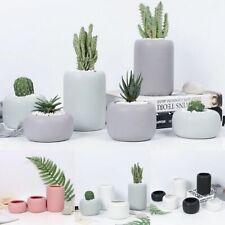 3Pcs Matte Porcelain Modern Flower Pots Ceramic Cylinder Succulent Vase Display