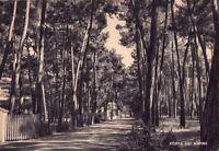 FORTE DEI MARMI (LUCCA) - RARA CARTOLINA - ANNI '30