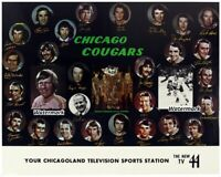 WHA 1970's Chicago Cougars Team Picture Color 8 X 10 Photo Picture