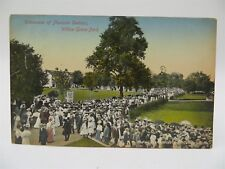 Vintage Early 1900's Postcard - Crowd of People Willow Grove Park Philadelphia