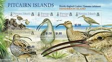 Pitcairn Islands 2005 Bristle Thighed Curlew mini sheet UM (MNH)