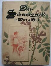 BUCH - Der Schwarzwald in Wort und Bild - 1899 - Ludwig Neumann - Franz Dölker
