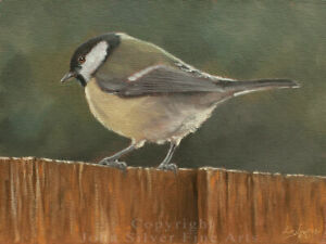 GREAT TIT ORIGINAL OIL PAINTING by Award Winning UK Master Artist JOHN SILVER BA