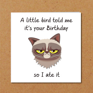 Grumpy Cat Birthday Card for anyone who loves cats - Funny, humorous fun grouchy