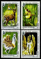 1995 Lady's-slipper orchid,Cave,Dama Stag,Bustard,Nature Year,Romania,5099,MNH