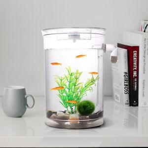 Fish Tank Aquarium Goldfish Bowl Desktop Home Office Fishing Tank Decoration