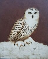 Signed Lydia Cooper - White Owl - Textured Art Mixed Media Painting on canvas