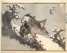 Antique Japanese Print-EHON-MANGA-BIRDS-MANDARIN DUCK-1850