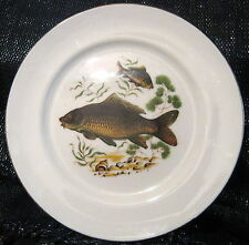 Aynsley Collectors Plate of freshwater fish approx 8 1/8 inches in diameter