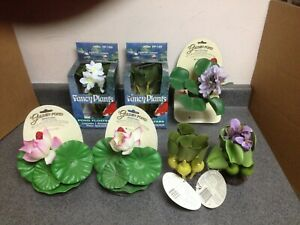 Fancy Plants Hyacinth Bulbs, Hyacinth Flowering, & Lotus Pond Floaters Decor