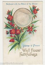 Language of Flowers, Wall Flower Perfume Novelty Postcard, B562