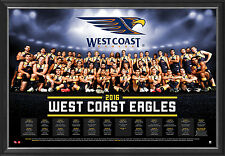 West Coast Eagles 2016 Official AFL Team Print Framed Naitanui Kennedy Priddis