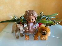 hübsche Puppe mit Kleid ca. 27 cm dekoriert mit Hund Steiff Peky + Terrier