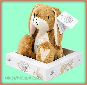 GUESS HOW MUCH I LOVE YOU SMALL NUT BROWN LOVE YOU NEW SOFT TOY SPECIAL DAY GIFT