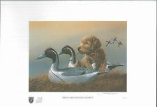 ILLINOIS #19 1993 STATE DUCK STAMP PRINT YELLOW LAB PUPPY, DECOY by P. Crowe
