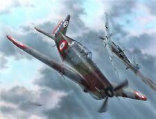 Morane Saulnier 406C.1 pilotes Tchèques et Polonais 1/72 Azur