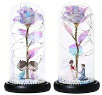 Rose Éternelle Fleurs Séchées Décoration à LED Cadeau Mariage Amour Fête de Noël