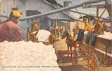 Tennessee postcard Memphis, Cotton Gin on Plantation black americana
