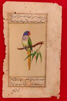 Hand Painted Parrot Bird Birds Miniature Painting India Art on Old Paper Nature