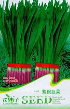 1 Pack 100 Purple Leek Seeds Chinese Chive Organic C043