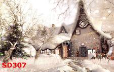 20x10FT Christmas Snow Vinyl Photography Backdrop Background Studio Props SD307