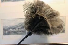 1 new small janitor grey ostrich feather dusters first grade feathers 15grm head