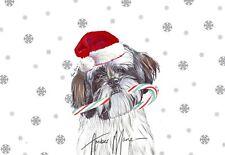 Single Large Luxury Shih Tzu Christmas Card Dog Gift/Present Candy Cane