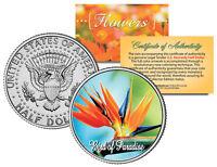 BIRD OF PARADISE FLOWER JFK Kennedy Half Dollar US Colorized Coin