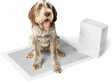 AmazonBasics Extra-Large Carbon Pet Dog and Puppy Training Pads - Pack of 50,