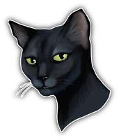 Cat Face Car Bumper Sticker Decal 4'' x 5''