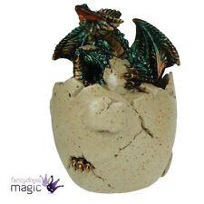 Nemesis Now huevo para incubar Dragón larva de pez grito Caja de la Baratija Joyería Regalo Gótico