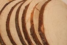 FICHTE Restposten Holzscheiben Astscheiben Baumscheiben Floristik 8 Stk 16-20cm