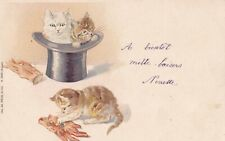 Cats play with  Top hat & gloves   Early  ( 1902) PC