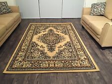 Beautiful Traditional Persian Style Area Rugs 8x11 Beige Color Rugs Carpet