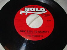 THE VICEROYS Goin' Back to Granny's/Get Set 45 Seafair Bolo Garage Rock