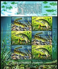 2011. Belarus. Fish of Reservoirs. MNH. M/sheet