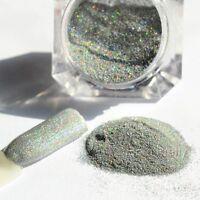 Nail Glitter Powder Holographic Pigment Dust Nail Art Manicure Decor Silver DIY
