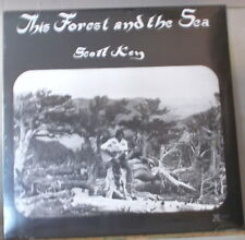 SCOTT KEY - THE FOREST AND THE SEA 1976 ATMOSPHERIC ACOUSTIC GUITAR LTD SEALD LP