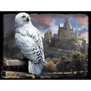 Harry Potter - 3D Image 500 Piece  Puzzle (HEDWIG)