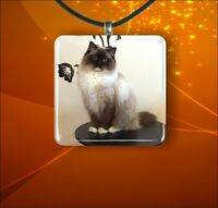 "CAT RAGDOLL BREED #2 GLASS 1"" PENDANT NECKLACE"