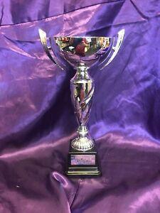 SILVER Presentation CupTrophy AWARD FOC Engraving,football,GOLF,all sports,296a